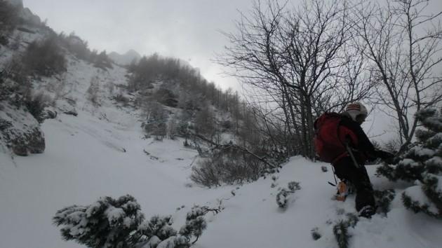 valea alba iarna (25)