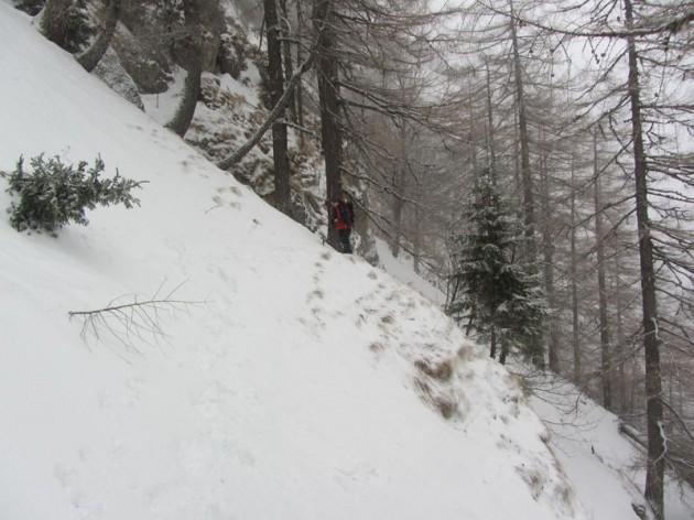 valea alba iarna (5)